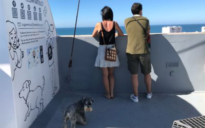 La Torre Tavira espacio Pet Friendly 🐶